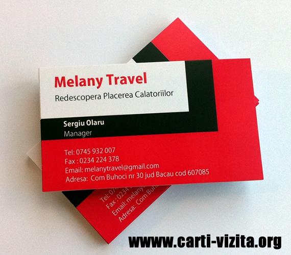 Carti de vizita agentie de turism