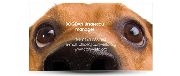 carte vizita doctor veterinar