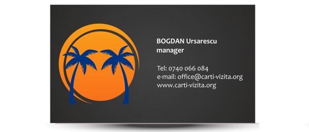 carti de vizita turism palmieri